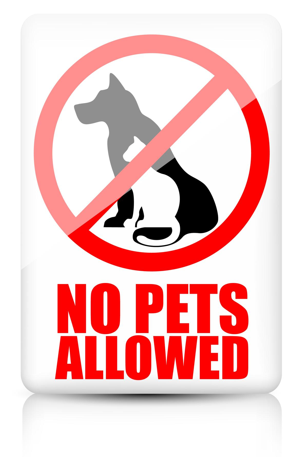 Pets Not Allowed